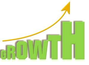business online domination growth